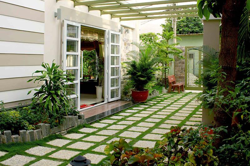 Trồng cây xanh trong nhà hoặc trước nhà